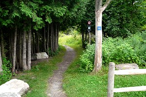 how to get to stony swamp trails